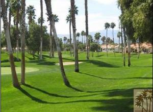 The Palms La Quinta Homes For Sale